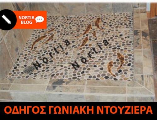 ΚΑΜΠΙΝΑ ΝΤΟΥΖΙΕΡΑΣ ΓΩΝΙΑΚΗ (ΤΕΤΡΑΓΩΝΗ)